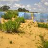 Sacchi di caffè contro la desertificazione del suolo