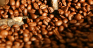 13 buoni (scientifici) motivi per bere caffè
