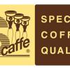 S caffe